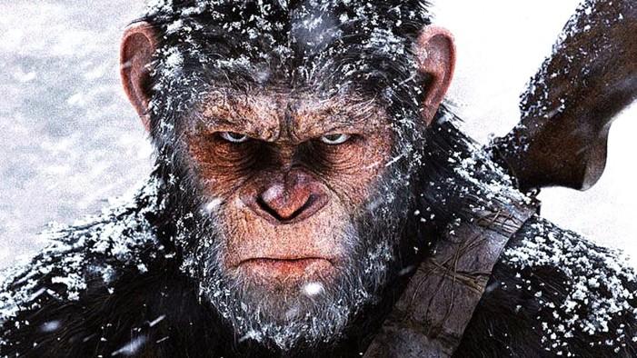 Don's irrational fear of monkeys renewed
