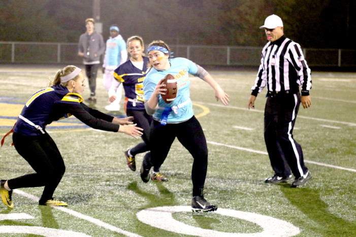 Goodrich powderpuff